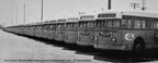 Retired 1000 series buses awaiting their fate in East Oakland in  1961.
