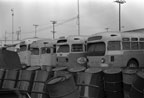 Retired AC Transit buses 1228, 2000 series and former Long Beach 7022 with engine removed in August 1978.