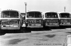 AC Transit buses 805, 747, 807 and 734