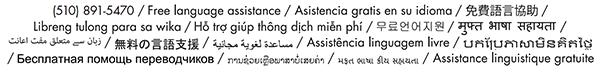 language_box-e1459796463152